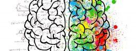 Cerebros para llevar